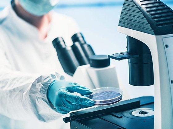 Área de Microbiología